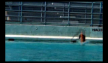 La tombe du plongeur / Plongeons (2009)
